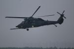 OMAさんが、千歳基地で撮影した航空自衛隊 UH-60Jの航空フォト(飛行機 写真・画像)