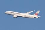 青春の1ページさんが、伊丹空港で撮影した日本航空 787-8 Dreamlinerの航空フォト(写真)
