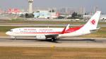 誘喜さんが、アタテュルク国際空港で撮影したアルジェリア航空 737-8D6の航空フォト(写真)