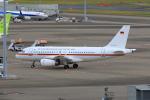 たまさんが、羽田空港で撮影したドイツ空軍 A319-133X CJの航空フォト(飛行機 写真・画像)