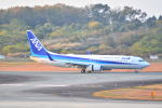md11jbirdさんが、熊本空港で撮影した全日空 737-881の航空フォト(写真)