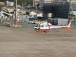 ヒロリンさんが、福岡空港で撮影した西日本空輸 AS350BA Ecureuilの航空フォト(写真)