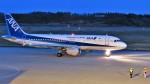 Ocean-Lightさんが、能登空港で撮影した全日空 A320-211の航空フォト(写真)