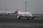 ax0110さんが、羽田空港で撮影した恆大地產 A319-133CJの航空フォト(写真)