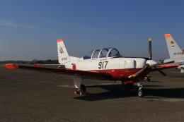 多楽さんが、茨城空港で撮影した航空自衛隊 T-7の航空フォト(写真)