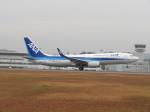 そら33さんが、広島空港で撮影した全日空 737-8ALの航空フォト(飛行機 写真・画像)