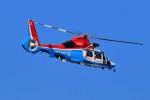 kamerajiijiさんが、東京ヘリポートで撮影した川崎市消防航空隊 AS365N3 Dauphin 2の航空フォト(写真)