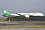 さくらの城南山。さんが、成田国際空港で撮影したエバー航空 787-9の航空フォト(写真)