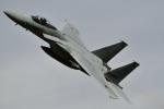 @あきやんさんが、岐阜基地で撮影した航空自衛隊 F-15J Kai Eagleの航空フォト(写真)