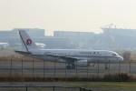 ハム太郎。さんが、羽田空港で撮影した恆大地產 A319-133CJの航空フォト(写真)