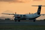 BOSTONさんが、ビクトリア国際空港で撮影したホライゾン航空 DHC-8-402Q Dash 8の航空フォト(写真)
