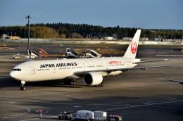 ちかぼーさんが、成田国際空港で撮影した日本航空 777-346/ERの航空フォト(飛行機 写真・画像)