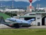 リンリンさんが、名古屋飛行場で撮影した航空自衛隊 U-125A(Hawker 800)の航空フォト(写真)