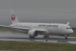 リンリンさんが、中部国際空港で撮影した日本航空 787-8 Dreamlinerの航空フォト(写真)