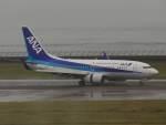 リンリンさんが、中部国際空港で撮影した全日空 737-781の航空フォト(写真)