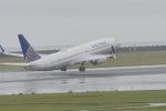 リンリンさんが、中部国際空港で撮影したユナイテッド航空 737-824の航空フォト(写真)