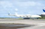 kohei787さんが、アントニオ・B・ウォン・パット国際空港で撮影したアントノフ・エアラインズ An-225 Mriyaの航空フォト(写真)