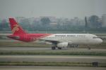 JA8037さんが、広州白雲国際空港で撮影した深圳航空 A320-232の航空フォト(写真)