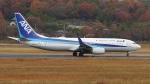 撮り撮り人さんが、岡山空港で撮影した全日空 737-881の航空フォト(写真)