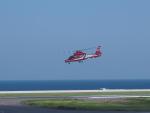ken1☆MYJさんが、北九州空港で撮影した北九州市消防航空隊 AS365N3 Dauphin 2の航空フォト(写真)