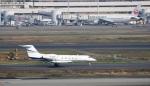 ハム太郎。さんが、羽田空港で撮影したメリディアナ・エア G350/G450の航空フォト(写真)