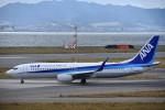 空が大好き!さんが、関西国際空港で撮影した全日空 737-881の航空フォト(写真)