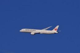 mild lifeさんが、伊丹空港で撮影した日本航空 787-9の航空フォト(飛行機 写真・画像)