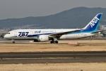 rjジジィさんが、伊丹空港で撮影した全日空 787-8 Dreamlinerの航空フォト(写真)