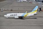 とびたさんが、中部国際空港で撮影したAIR DO 737-781の航空フォト(写真)