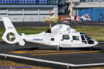 Chofu Spotter Ariaさんが、東京ヘリポートで撮影したエアバス・ヘリコプターズ・ジャパン AS365N2 Dauphin 2の航空フォト(写真)