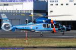 Chofu Spotter Ariaさんが、東京ヘリポートで撮影した警視庁 EC155B1の航空フォト(飛行機 写真・画像)
