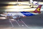 グリスさんが、羽田空港で撮影した天津航空 A320-214の航空フォト(写真)