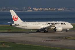 キイロイトリさんが、関西国際空港で撮影した日本航空 787-8 Dreamlinerの航空フォト(写真)