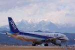 元青森人さんが、仙台空港で撮影した全日空 A320-211の航空フォト(写真)
