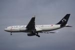 JA8037さんが、成田国際空港で撮影した中国国際航空 A330-243の航空フォト(写真)