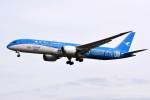 さくらの城南山。さんが、成田国際空港で撮影した厦門航空 787-9の航空フォト(写真)