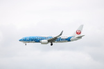 さんたまるたさんが、那覇空港で撮影した日本トランスオーシャン航空 737-8Q3の航空フォト(写真)