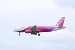 さんたまるたさんが、那覇空港で撮影したピーチ A320-214の航空フォト(写真)