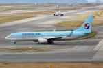徳兵衛さんが、関西国際空港で撮影した大韓航空 737-8SHの航空フォト(写真)