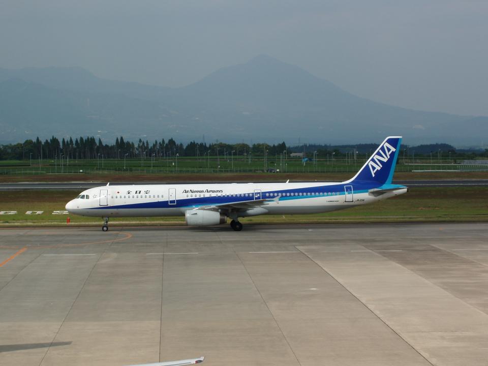 デデゴンさんの全日空 Airbus A321 (JA101A) 航空フォト