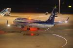 ぼのさんが、羽田空港で撮影した全日空 737-881の航空フォト(写真)