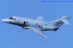 いおりさんが、茨城空港で撮影した航空自衛隊 U-125A(Hawker 800)の航空フォト(写真)
