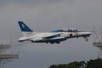 木人さんが、那覇空港で撮影した航空自衛隊 T-4の航空フォト(写真)