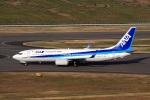 ドリさんが、福島空港で撮影した全日空 737-8ALの航空フォト(写真)