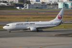 神宮寺ももさんが、伊丹空港で撮影した日本航空 737-846の航空フォト(写真)