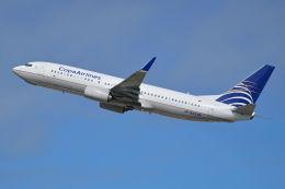 BOSTONさんが、サンパウロ・グアルーリョス国際空港で撮影したコパ航空 737-8V3の航空フォト(飛行機 写真・画像)