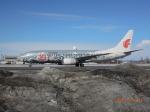 OMAさんが、新千歳空港で撮影した中国国際航空 737-86Nの航空フォト(写真)