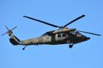 デルタおA330さんが、茨城空港で撮影した陸上自衛隊 UH-60JAの航空フォト(写真)
