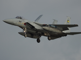自由猫さんが、小松空港で撮影した航空自衛隊 F-15J Eagleの航空フォト(写真)