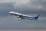 Arvinedさんが、羽田空港で撮影した全日空 A321-211の航空フォト(写真)